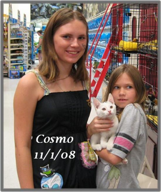 cosmo1101